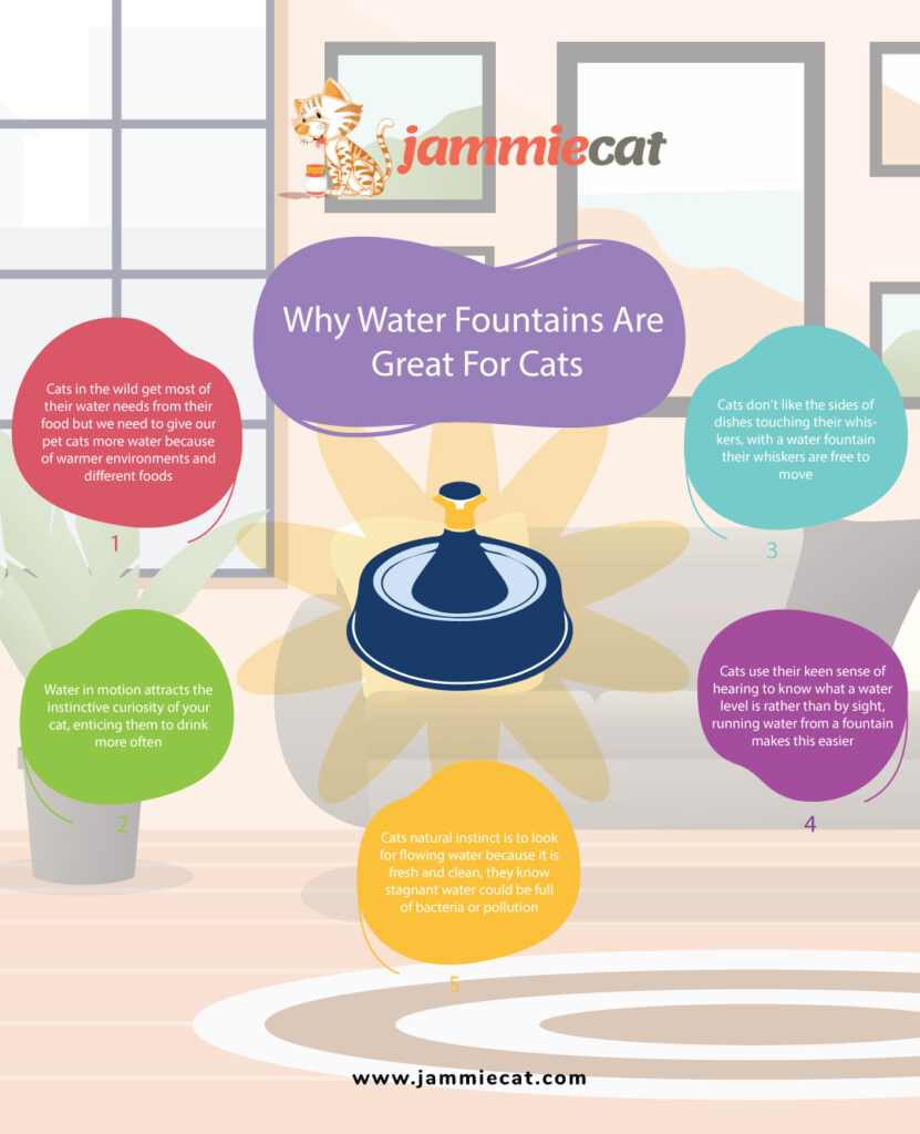 Why-Water-Fountains-Are-Great-For-Cats-Infographic